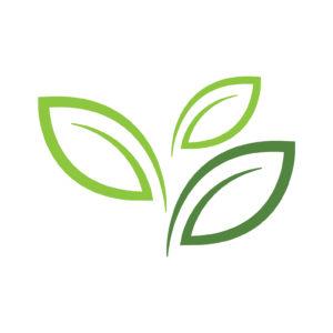 Ekogroszek - obraz