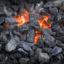 Rodzaje węgla kopalnego